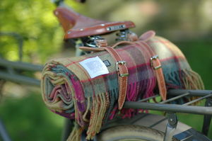 Picnic Rug And Leather Saddle Straps