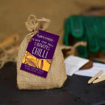Grow Your Own Fireworks Chilli Mini Plant Kit