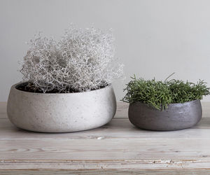 Stone And Cocoa Cement Planters