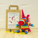 Sock Unicorn Craft Kit