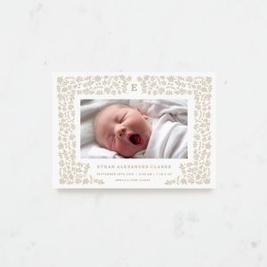 Harvest Birth Announcements - new baby cards