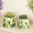 Paradis Tropical Palm Leaf Planter Selection