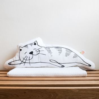 'Sophie The Snoozing Cat' Decorative Cushion