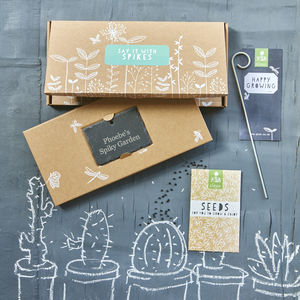 Say It With Spikes Cactus Gift - gifts for him