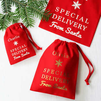 Special Delivery From Santa Gift Bags