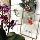 Personalised Birth Flower In A Frame Letter Box Gift