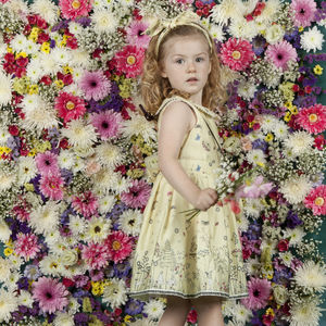 Penny 'Lemon Butterflies' Dress
