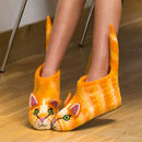 Ginger The Cat Adult Felt Slippers