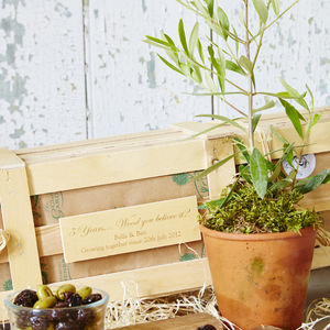 5th Wedding Anniversary Personalised Olive Tree Gift - 5th anniversary: wood
