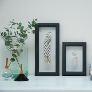 Framed Silver Pheasant Feather