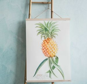 Ananas Pineapple Print - nature & landscape
