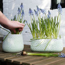 Mint Green And White Speckled Plant Pot