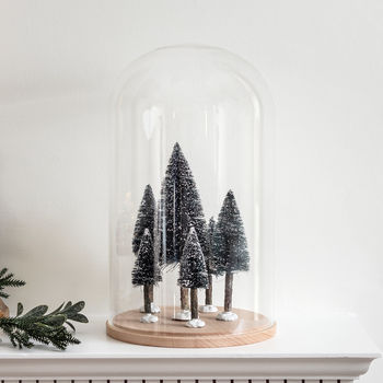 Mini Bottle Brush Christmas Trees And Glass Dome