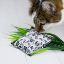 Handcrafted Organic Catnip Parcel Toy
