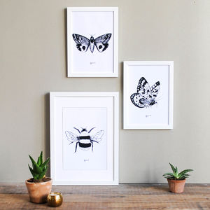 Insect Illustration Print Set - canvas prints & art