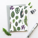 Houseplants Greeting Card