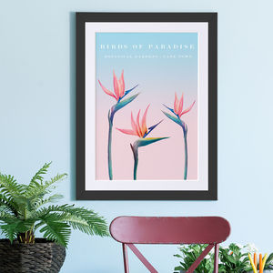 Birds Of Paradise Botanical Art - nature & landscape
