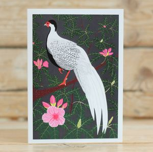 Silver Pheasant Greeting Card