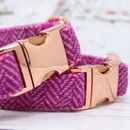 Innis Rose Gold Harris Tweed Dog Collar