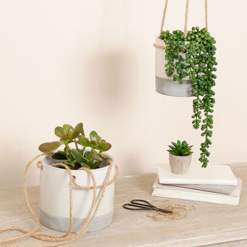 Painted Hanging Planters With Rope