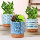 Three Personalised Blue Watercolour Herb Planters