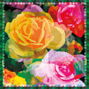 Joy Rose Silk Scarf