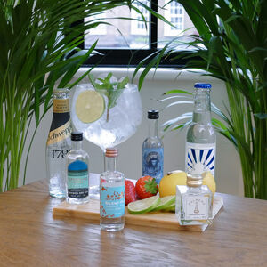 The Four Classic Style Gins And Tonics Tasting Gift Set
