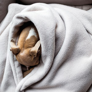 Luxury Double Fleece Pet Blanket