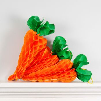 Set Of Three Large Honeycomb Carrot Easter Decoration