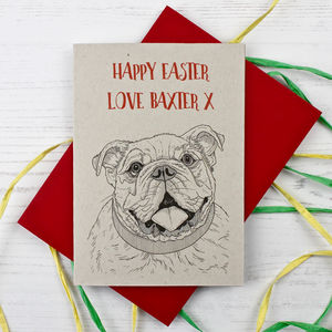 Bulldog Easter Card