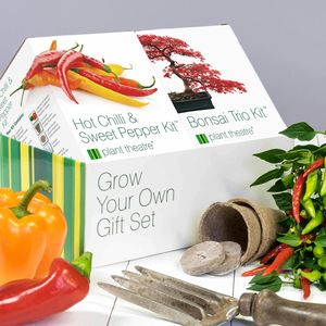 Bonsai Trio And Hot Chilli And Sweet Pepper Kit - gifts for grandparents