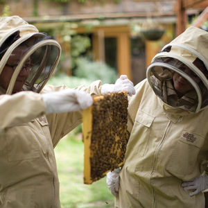 Urban Beekeeping And Craft Beer Experience For Two - gifts for fathers