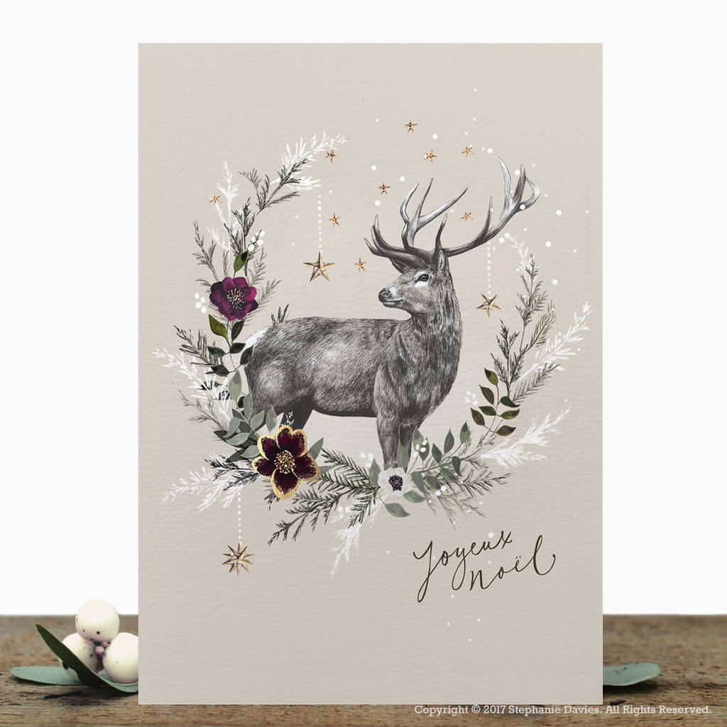 Pack Of Luxury Christmas Cards By Stephanie Davies