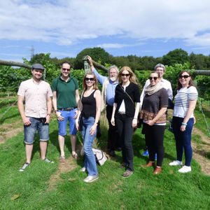 Sussex English Wine Tour With Travel From London