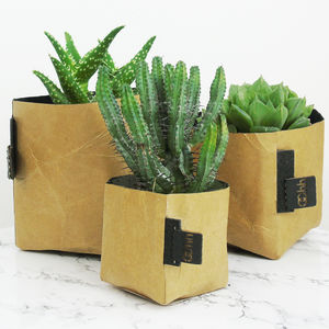 Creased Paper Planter - flowers, plants & vases
