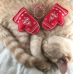 Catnip Toys, Mittens For Kittens, Cat Toys - shop by recipient