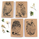 A6 Owl Notebook Choice Of Four Designs
