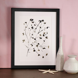 Limited Edition Blossom A4 Art Print