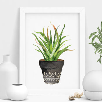 Bohemian Potted Cactus Illustration Print