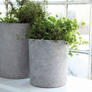 Concrete Plant Pot Set Of Three