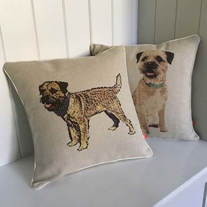 Border Terrier Feature Cushion - bedroom