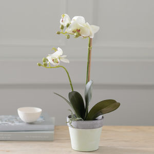 Little Artificial Potted White Orchid - home sale