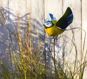 Flying Blue Tit On Rod Handmade Recycled Sculpture