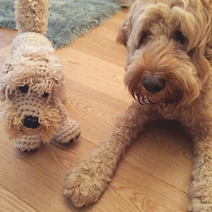 Personalised Crochet Soft Toy Of Your Pet Dog