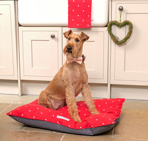 Cranberry Stars Cotton Dog Beds - dogs
