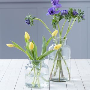 Etched Contemporary Clear Glass Vase - vases