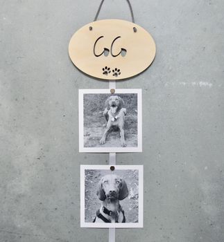 Personalised Pet Photo Frame Gift