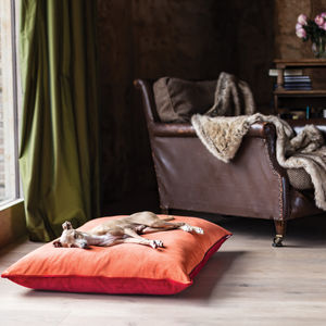 Charley Chau Velour Contrast Dog Bed Mattress - floor cushions