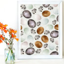 Collection Of Birds Eggs Pattern Art Print