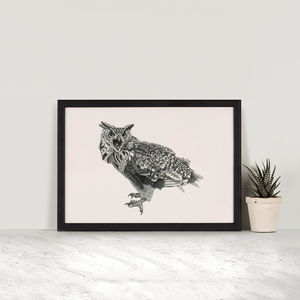King Of The Birds, Owl Illustration Print - posters & prints